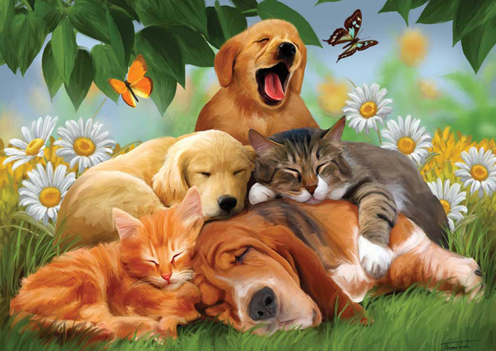cats_and_dogs_02 (700x495, 339Kb)