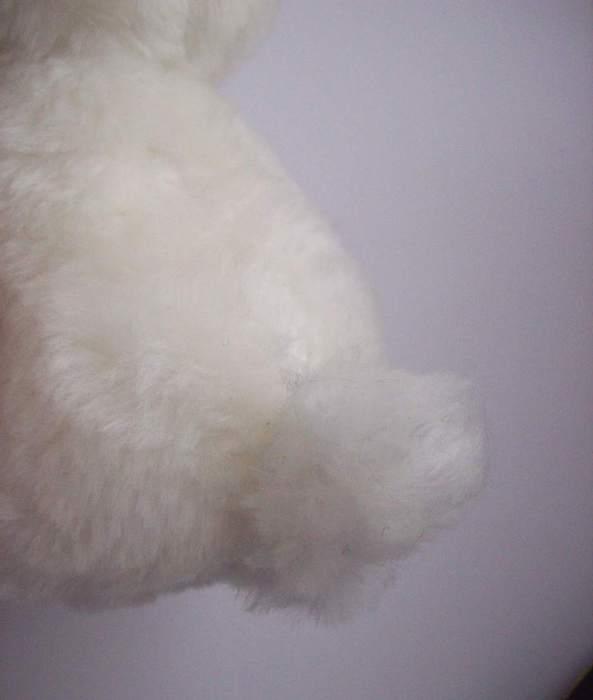 Шьем игрушку. ПЕСИК ТОШКА выкройка собачки (31) (593x700, 15Kb)