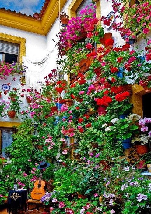 цветы4 (496x700, 172Kb)