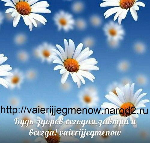24450_470321443026920_841144254_n (500x478, 357Kb)