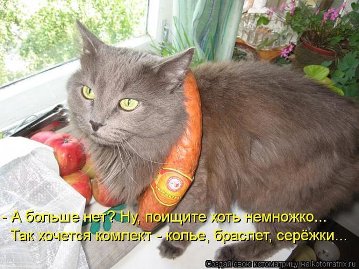 kotomatritsa_92I (700x524, 72Kb)