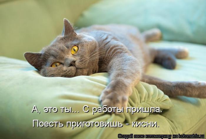 kotomatritsa_k- (700x472, 38Kb)