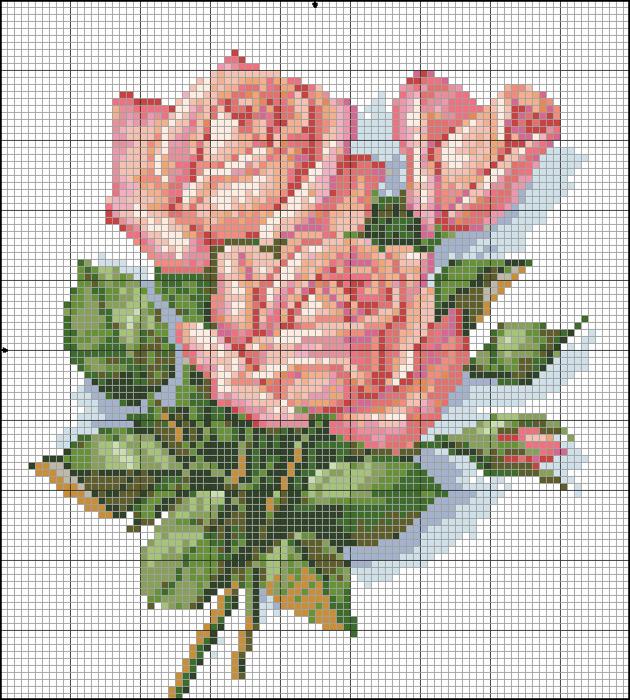 роза5 (630x700, 513Kb)