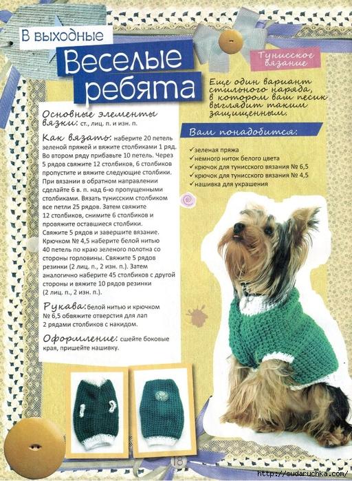 Вяжем для собачек