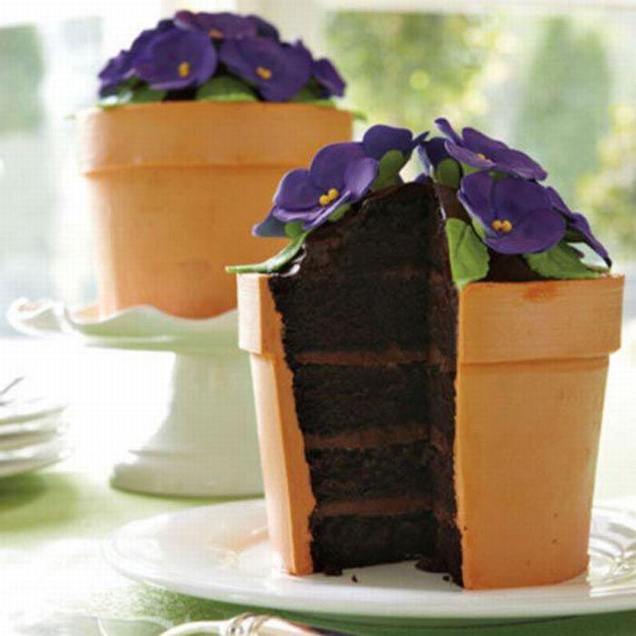 Горшок с цветами торт