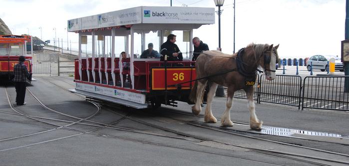 конный трамвай дугласа фото 1 (700x333, 130Kb)