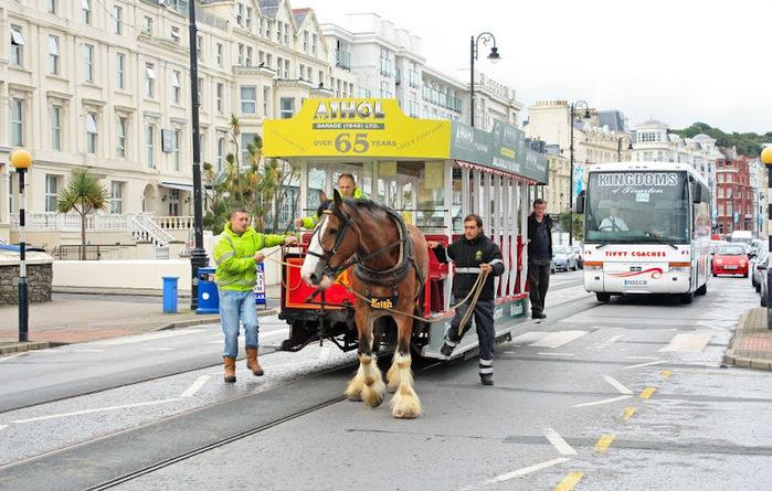 конный трамвай дугласа фото 2 (700x445, 150Kb)