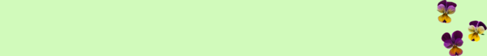 фон (700x80, 8Kb)