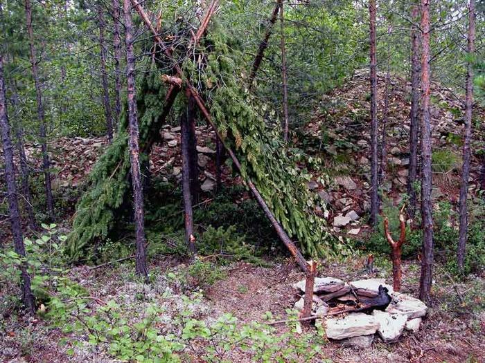 Шалаш в лесу своими руками фото