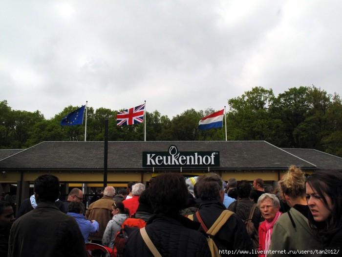 май 2013 Кекенхоф 001 (700x525, 164Kb)