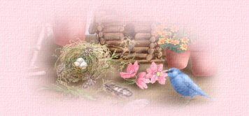 ppbirdhousesbird (356x166, 12Kb)