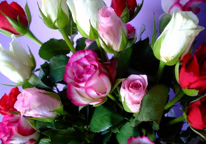 Фото цветок для подруги