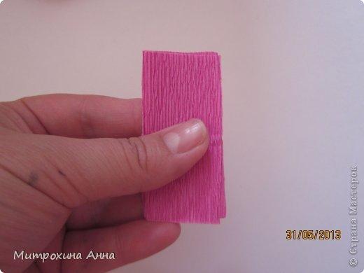 бутоны роз из гофрированной бумаги. мастер-класс (11) (520x390, 18Kb)