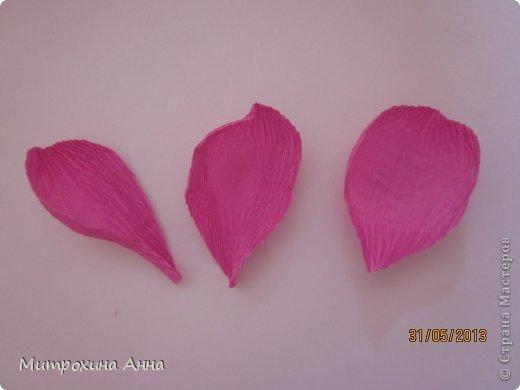 бутоны роз из гофрированной бумаги. мастер-класс (15) (520x390, 17Kb)