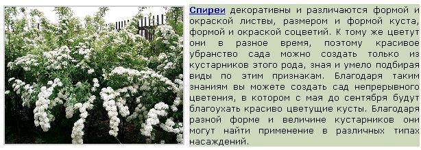 Безымянный10 (614x219, 64Kb)
