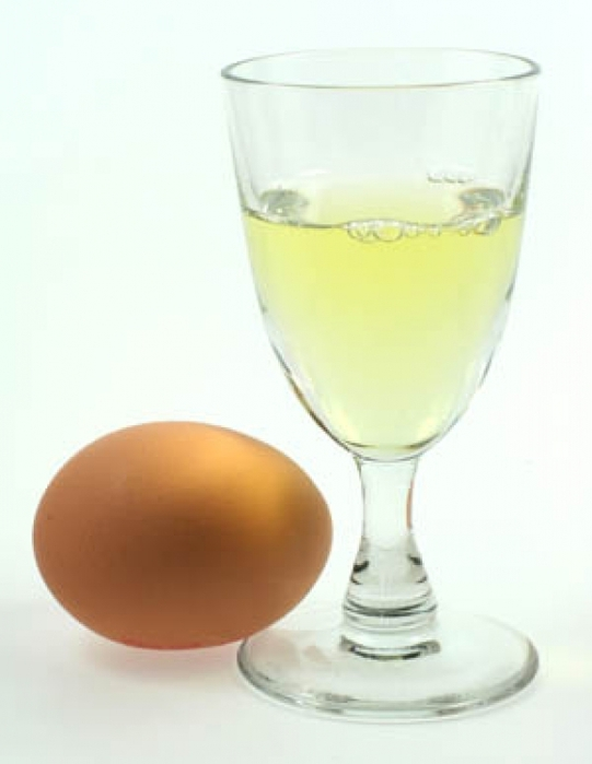 4080226_egg_white (541x700, 127Kb)