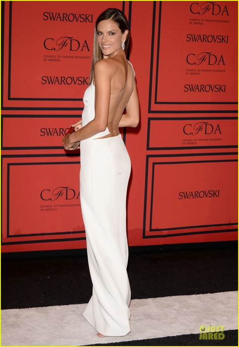 alessandra-ambrosio-karolina-kurkova-cfda-fashion-awards-2013-red-carpet-02 (482x700, 73Kb)