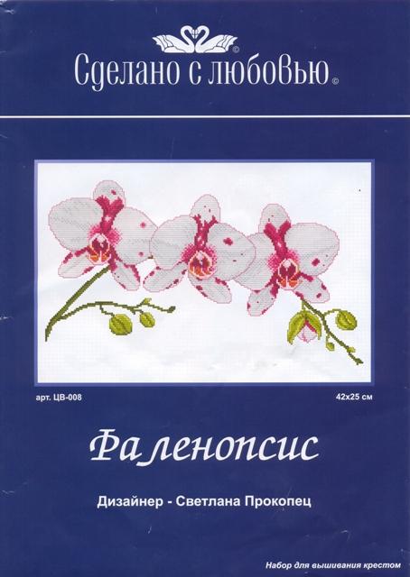 5282851_101060322_large_CV008_falenopsis (454x640, 134Kb)