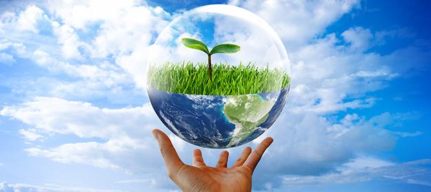 Июня всемирный день эколога плакаты