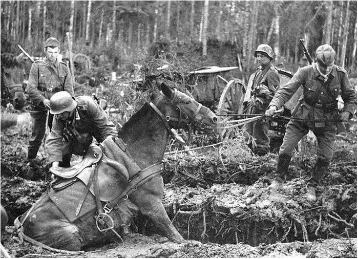 немецкие войска (699x506, 356Kb)