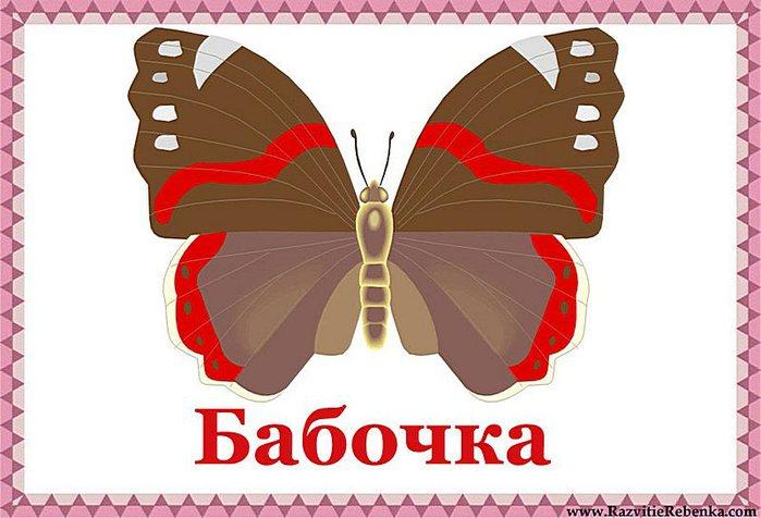 5111852_Babochka (700x476, 60Kb)