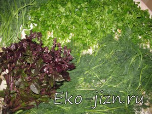 kak_zamorozit_zelen-300x225 (300x225, 32Kb)