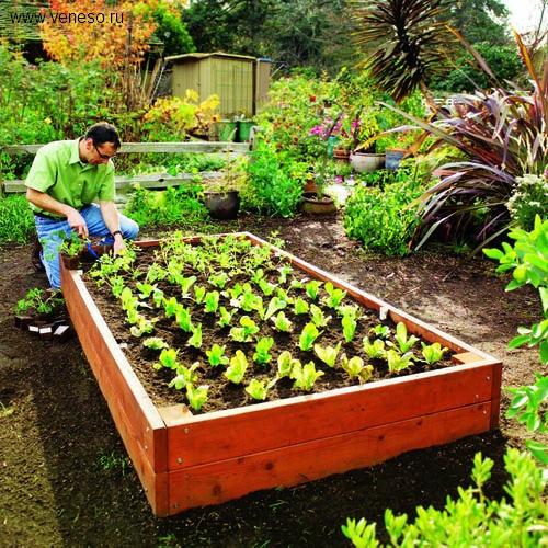 Поделки своими руками в саду из подручных