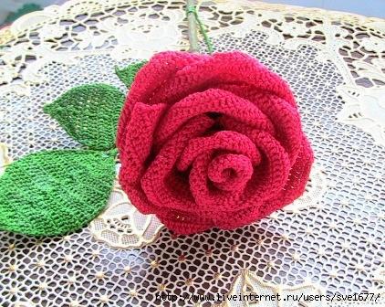роза (422x336, 169Kb)
