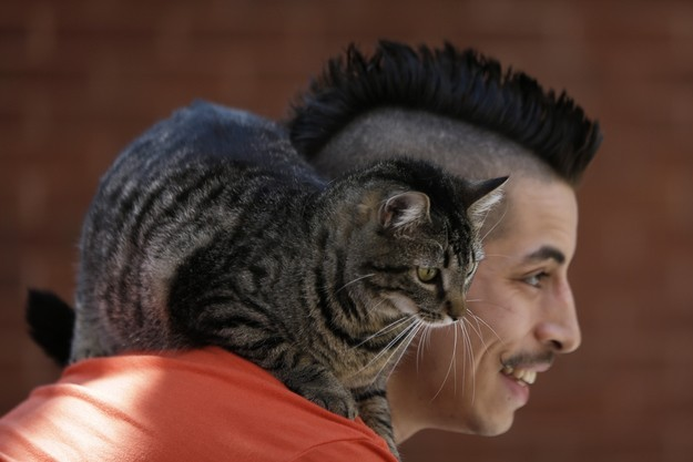 руди салдиа и его кошка мери джейн 1 (625x417, 44Kb)