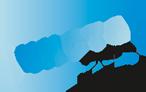 logo_chistograd_mini (146x92, 14Kb)