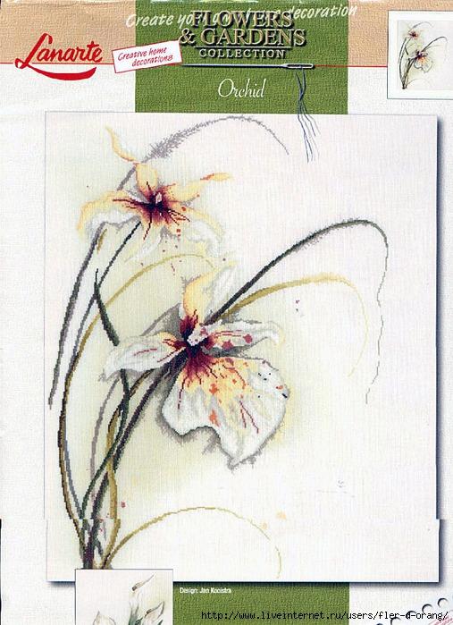 Орхидея. Схема для вышивки