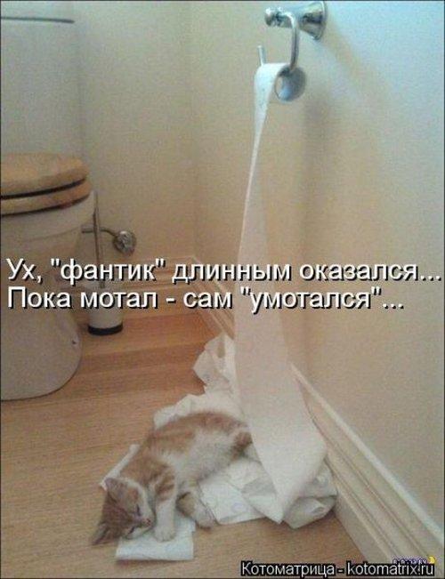 http://img1.liveinternet.ru/images/attach/c/8/101/830/101830269_large__18_.jpg