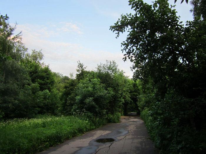 Закат Кусково (2) (700x525, 126Kb)