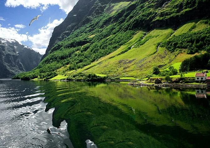 норвежские фьорды фото Sognefjorden 4 (670x472, 303Kb)