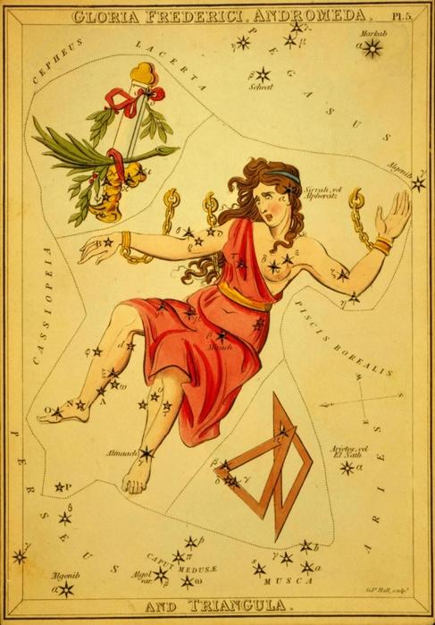 Андромеда (487x700, 275Kb)