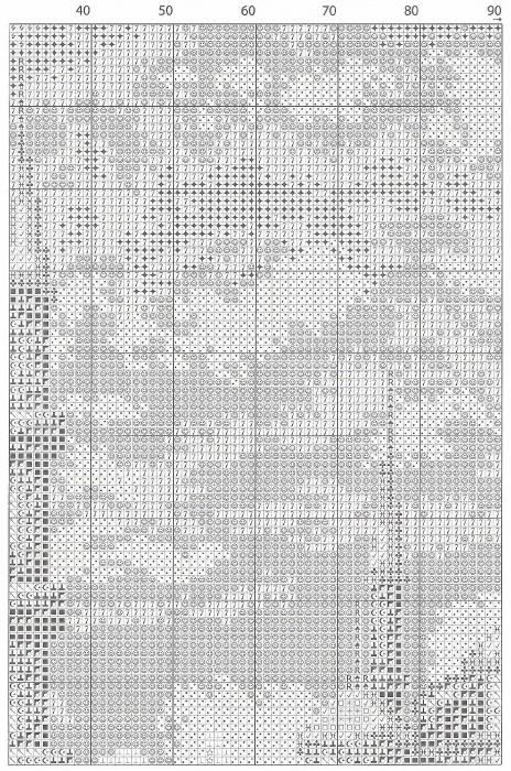 www.StitchArt.net-1-1 (464x700, 403Kb)
