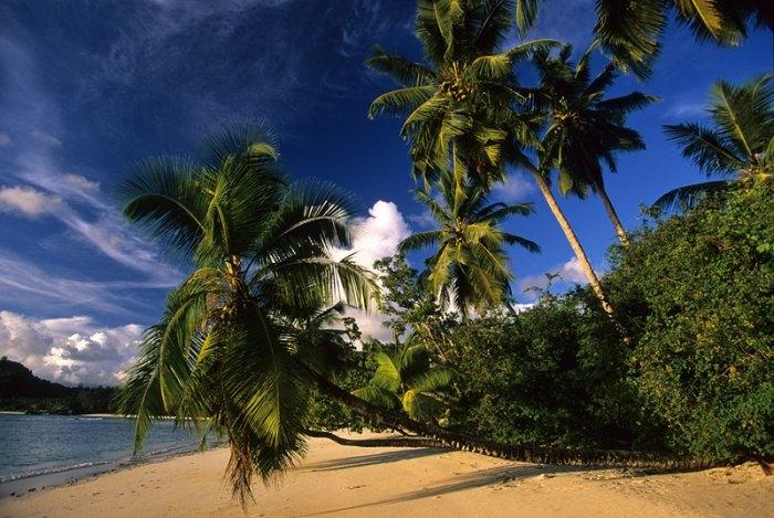 сейшельские острова фото 6 (700x469, 235Kb)