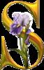 5090154_UfLHxuQNd4 (63x101, 13Kb)