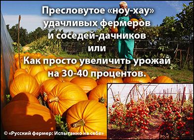 5102761_images (393x285, 179Kb)