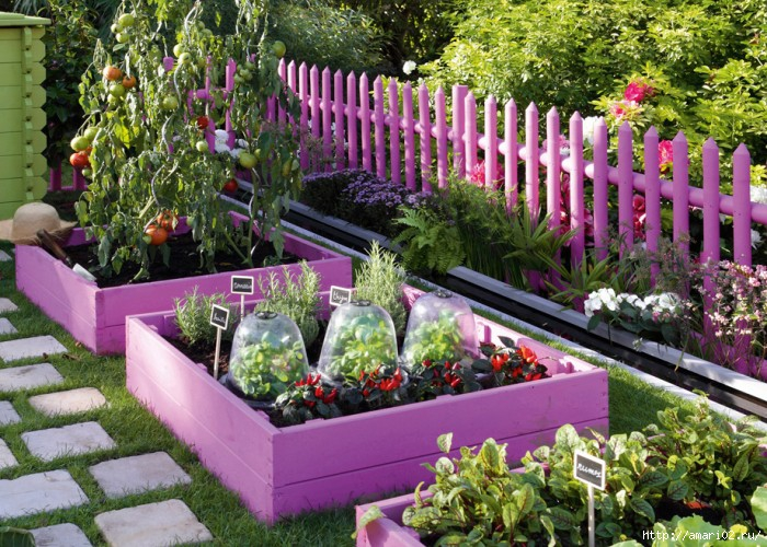 LookAtHome.ru_garden_home-vegetable-garden-ideas-11-700x500 (700x500, 322Kb)