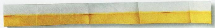 маргаритка из лент (2) (700x92, 59Kb)