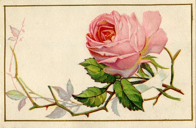 Old-Pink-Rose-Image-GraphicsFairy (400x263, 102Kb)