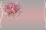 Превью схема-роз.роза (700x461, 105Kb)