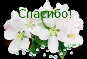 0_ced60_12e2c527_M (300x205, 102Kb)