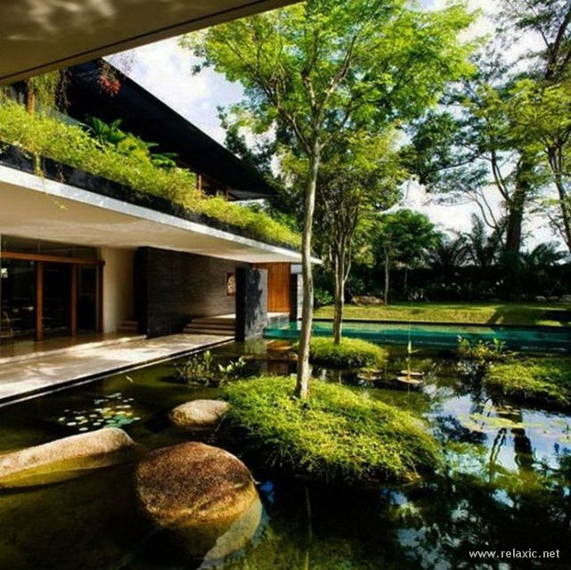 garden_022 (640x639, 416Kb)