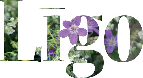 5293631_ligo_nadpis (590x323, 210Kb)