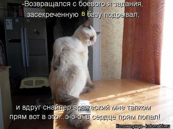 102298445_large_17.jpg