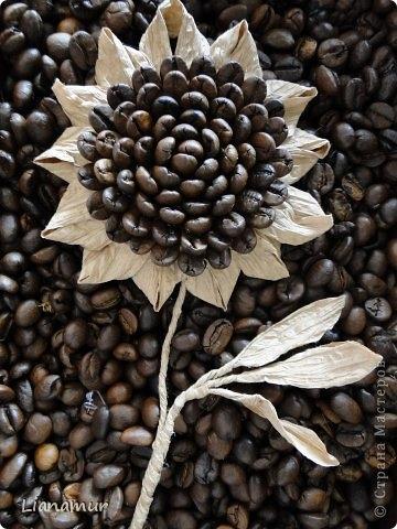 цветы из кофе и шпагата (1) (360x480, 135Kb)