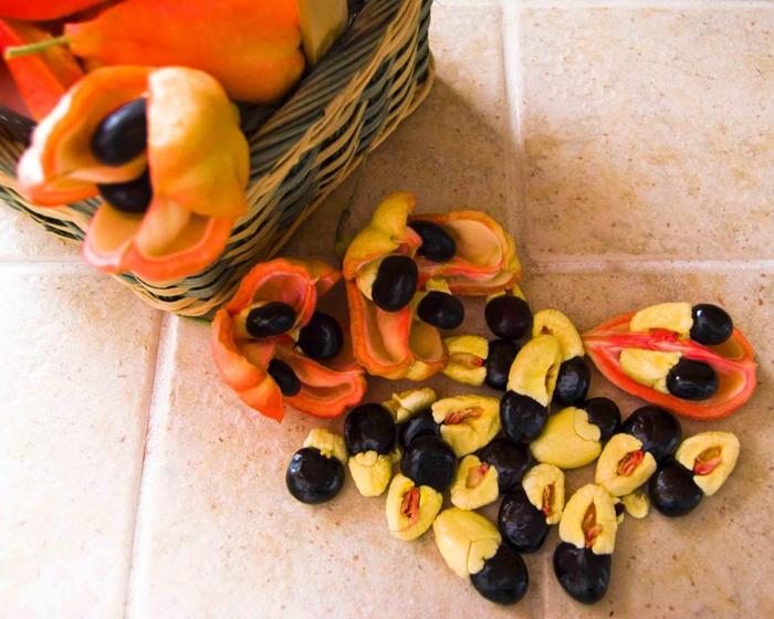 экзотический фрукт аки фото 3 (700x560, 421Kb)