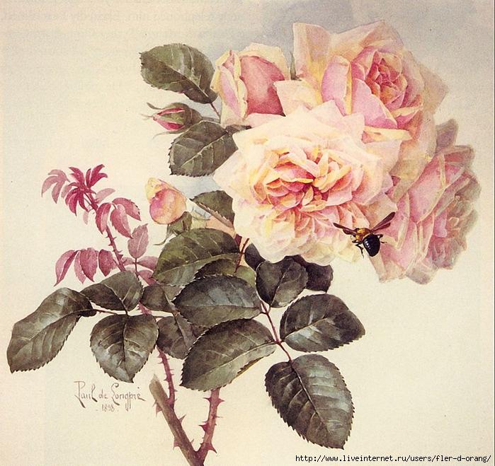 декупажная-карта-розы-скачать-4 (700x659, 393Kb)